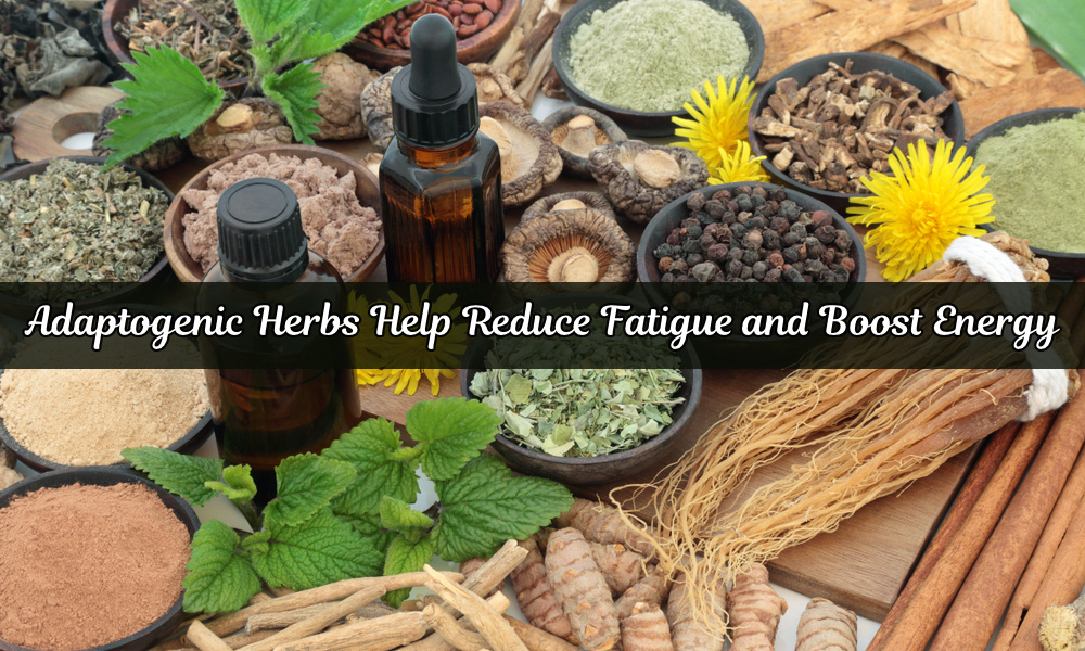 Adaptogenic Herbs Help Reduce Fatigue and Boost Energy