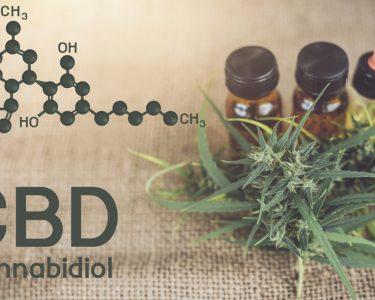 Cannabidiol (CBD) Oil